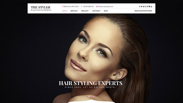 CssIgniter The Styler - Download Beauty and Health WordPress Theme
