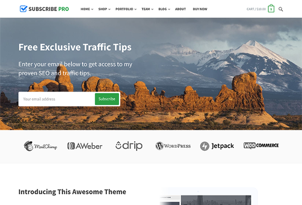 HappyThemes Subscribe - Download Multi-Purpose Theme for WordPress